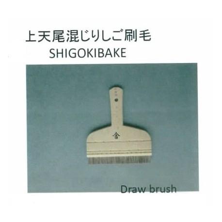 SHGOKIBAKE