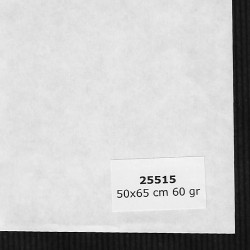 PAPELES JAPONESES 25515 HOSHO 50X65 CM 60 GRS